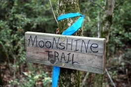 Bob Terry's Moonshine Trail sign