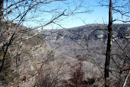 41signal_mountain_view