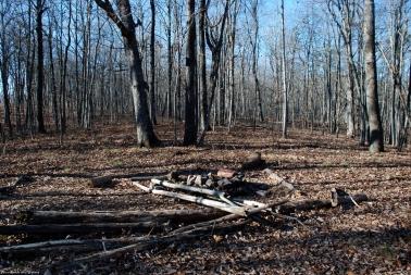 72poplar_spring_campsite