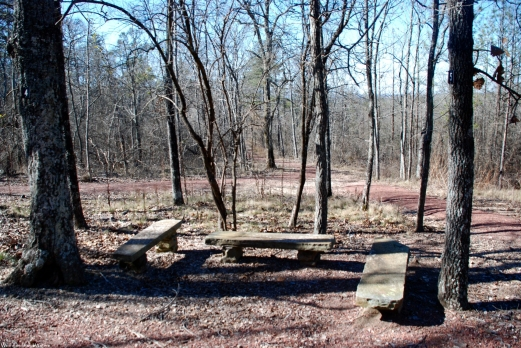 18nature_trail_bench