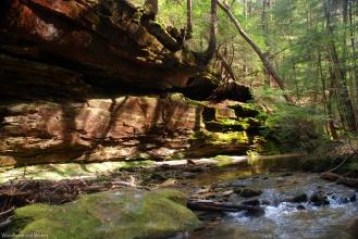 Eagle Creek, Sipsey Wilderness