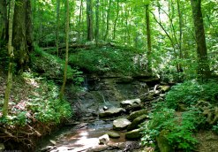 70large_creek_crossing
