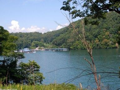 Norris Lake Marina