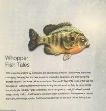 Whopper Fish Tales
