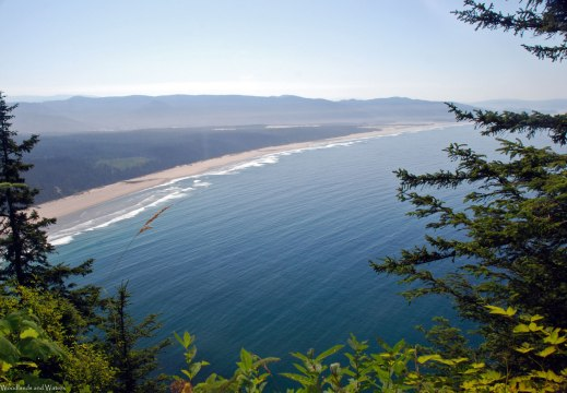 Cape Lookout State Park, OR