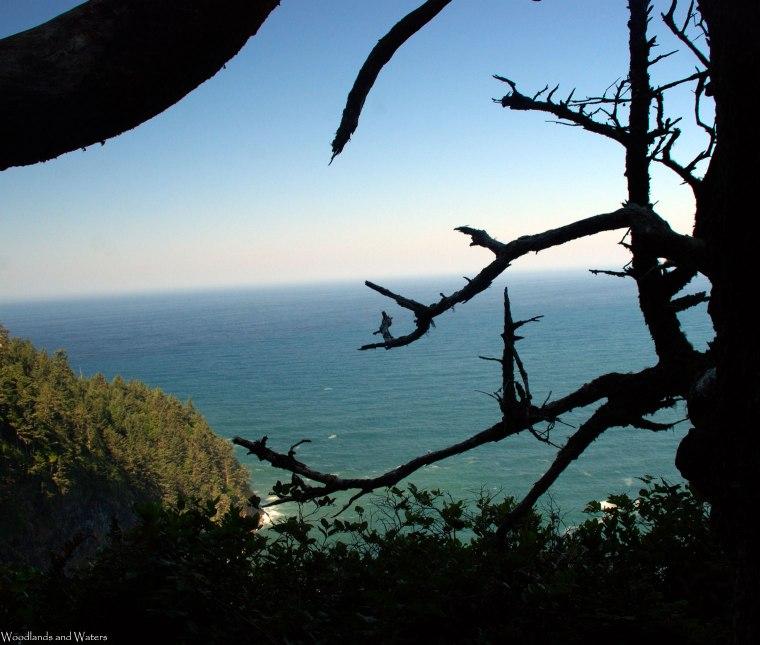 19ocean_view