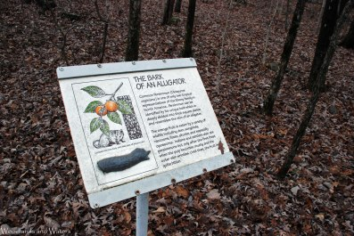 15persimmon_bark_sign