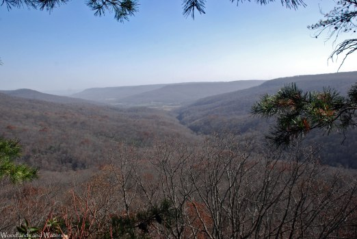 Sweden Cove, Franklin State Forest, TN