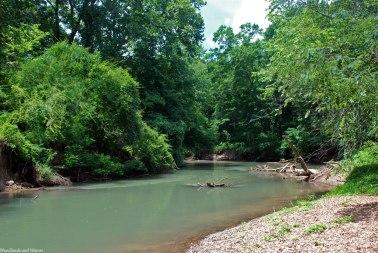 Flint River, Goldsmith-Schiffman Wildlife Sanctuary