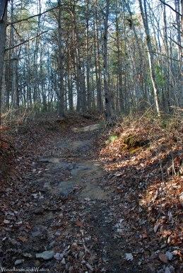 57sweden_cove_trail