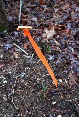 06temp_trail_marker