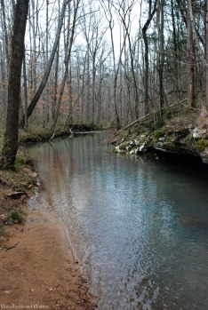 Wiggins Hollow Creek