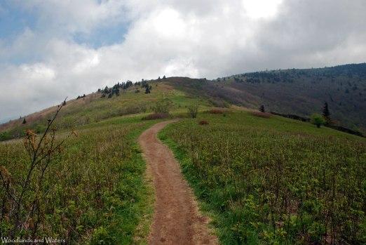 12trail_to_grassy_ridge