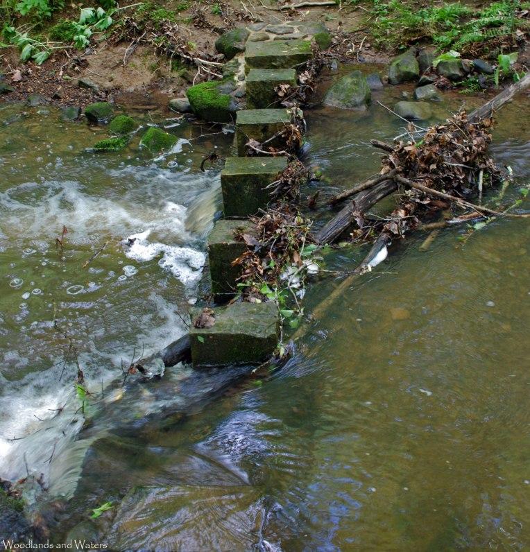 50devils_hollow_creek_crossing