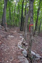 13rock_lined_trail