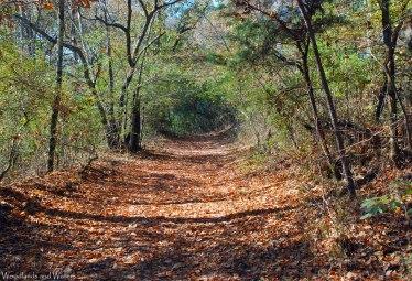 Redding Trail, Red Mountain Park