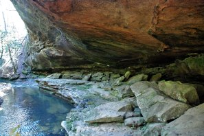 Payne Creek, Bankhead National Forest