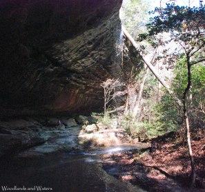 29payne_creek_falls