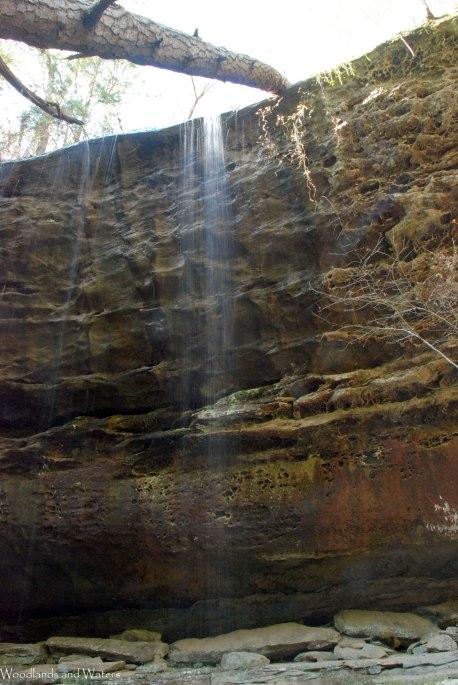 33payne_creek_falls