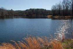 17sun_on_pond