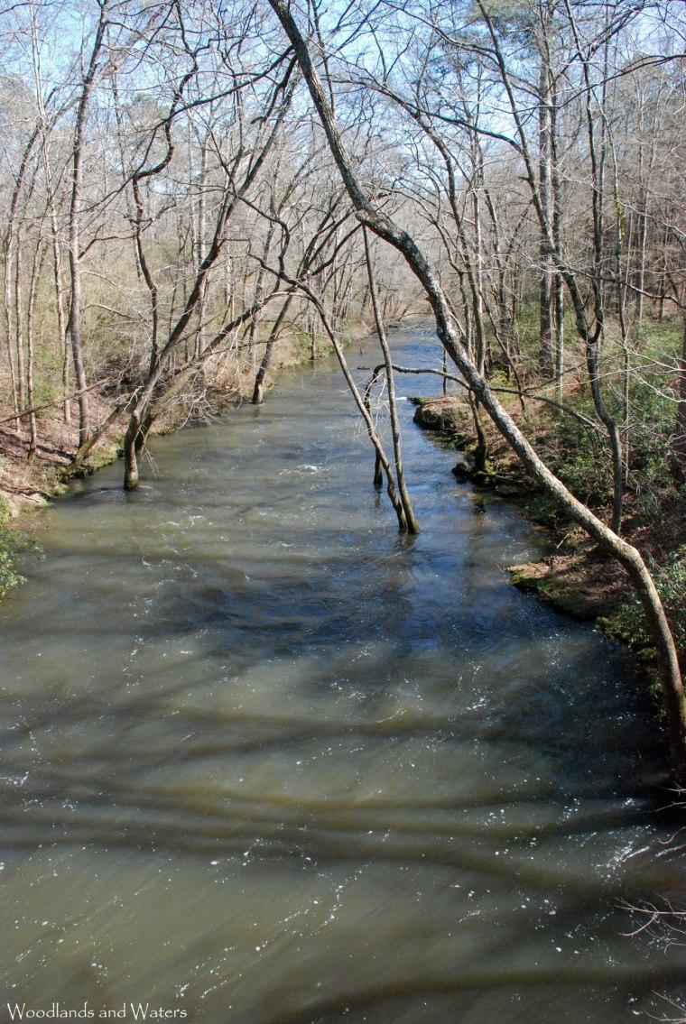 42duck_river_from_bridge