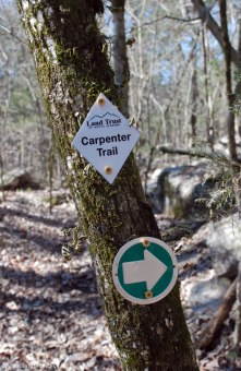 17carpenter_trail_diamond