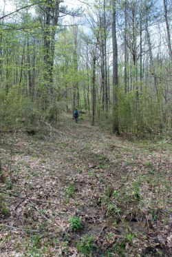 41west_bluff_trail