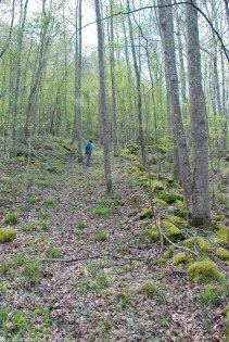 43steep_trail