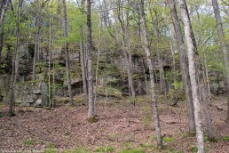 55outcropping_flanking_trail